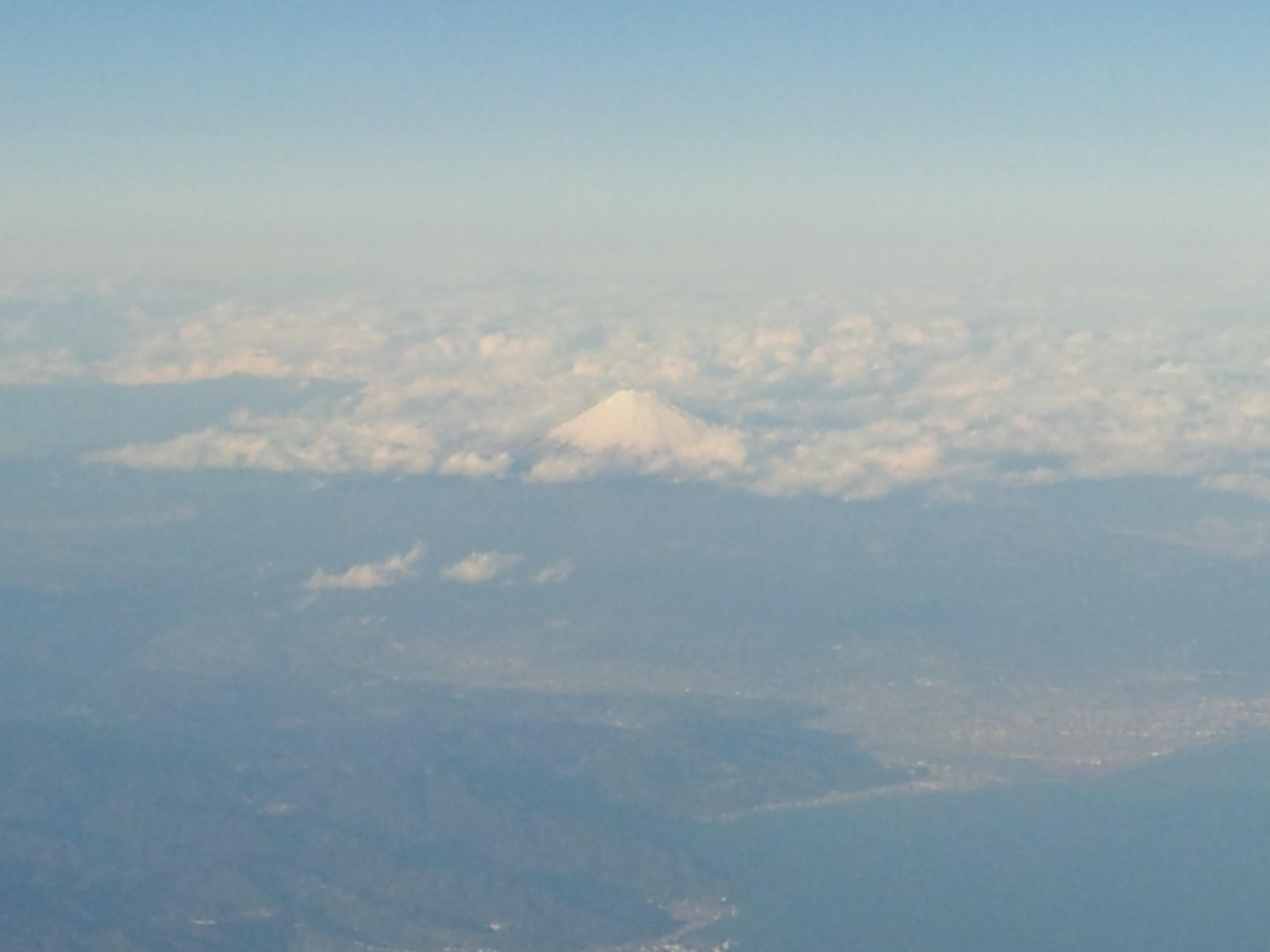 2012-02-08_16.31.33.jpg